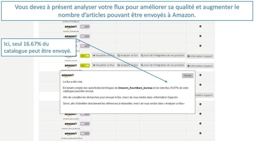 analyse_flux_amazon